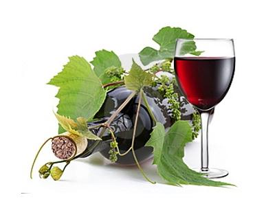 Víno 0,75l